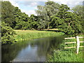TM3391 : The Waveney at Outney Common, Bungay by Roger Jones