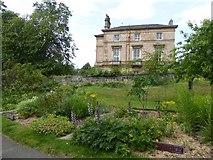 NS5667 : Historic beds in Glasgow Botanic Garden by David Smith