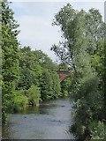 NS5667 : River Kelvin upstream of Ha'penny Bridge by David Smith