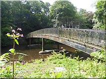 NS5667 : The Humpback Bridge into Glasgow Botanic Gardens by David Smith