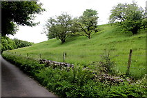 SK1868 : Hillside in Kirk Dale by Nigel Mykura
