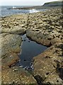 ND3762 : Rockpool on the coast near Nybster, Caithness by Claire Pegrum