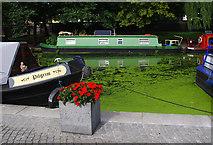 TQ2681 : Grand Union Canal, Paddington Arm by Ian Taylor