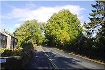 SD8789 : Brunt Acres Road, Hawes by Richard Webb