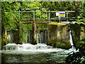SU4619 : Itchen Navigation, Stoke Lock by David Dixon