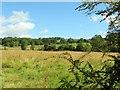 SD7411 : Fields in Harwood by Philip Platt
