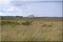 NT6578 : Bass Rock from John Muir Country Park at Belhaven Bay by Mike Pennington