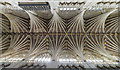 SX9292 : Nave vaulting, Exeter Cathedral by J.Hannan-Briggs