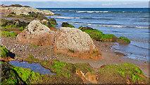 NH7358 : Rock and seaweed at Rosemarkie by Julian Paren