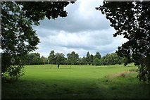 NX9575 : Dumfries and Galloway Golf Course by Billy McCrorie