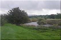 SD9789 : River Ure by Richard Webb
