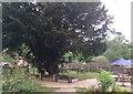SU5980 : Pub garden of the Bull, Streatley Hill by Virginia Knight