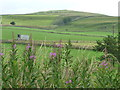 SK1463 : Railway cutting, south of Parsley Hay by Christine Johnstone