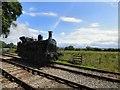 SJ9744 : Bellerophon at Dilhorne Park by Gerald England