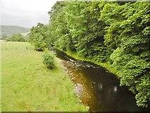 SJ1733 : Tregeiriog, Afon Ceiriog by Mike Faherty