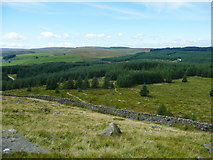 SD7659 : View of Gisburn Forest from Whelp Stone Crag, Rathmell by Humphrey Bolton