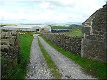 SD7659 : Farm driveway at Whelpstone Lodge, Rathmell by Humphrey Bolton