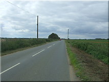TL4488 : Byall Fen Drove by JThomas