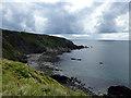 SX0949 : Looking across Platt Cove towards Gribbin Head by John Lucas