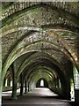 SE2768 : Vaulted cellarium, Fountains Abbey by Andrew Curtis
