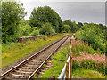 SD7912 : East Lancashire Railway at How Lane Bridge by David Dixon