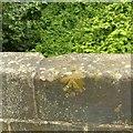 SK4234 : Rivet bench mark, Barnes's Bridge, Borrowash by Alan Murray-Rust