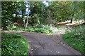 SO7059 : Bend in the Tidbatch road by Richard Webb