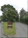 SS9407 : Entrance to Bickleigh village by David Smith