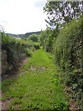 SS9407 : Footpath in Bickleigh by David Smith