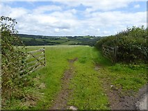 SS9011 : Field and track towards Thongsleigh Wood by David Smith