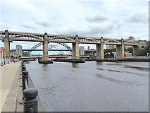NZ2563 : Tyne Bridges by Oliver Dixon