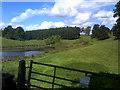 SO7595 : Lake Scene by Gordon Griffiths