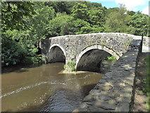 SN0717 : Llawhaden Bridge by PAUL FARMER