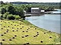 SN0403 : Carew Tidal Mill by PAUL FARMER