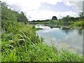 ST7715 : Hinton St Mary, River Stour by Mike Faherty