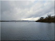 NS3882 : Looking up Loch Lomond by Gerald England
