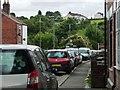 SK4452 : Jubilee on Pye Hill, from Pye Bridge by Christine Johnstone
