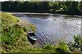 NT8440 : River Tweed below Coldstream weir by David Martin