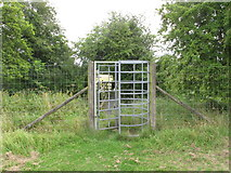 SP7103 : Tall kissing gate in Thame Park fence by David Hawgood