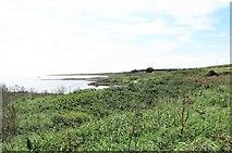 J6246 : The Irish Sea coastline due South between Port Kelly and Ballyquintin Point by Eric Jones