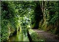 SJ9003 : Marsh Lane Narrows near Fordhouses, Wolverhampton by Roger  Kidd