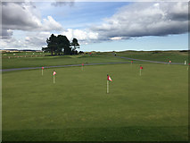 NU0445 : Goswick Golf Club by John Allan