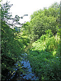TQ0481 : Drain by the River Colne east of Huntsmoor Park Farm by Mike Quinn