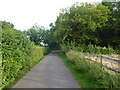 TQ4257 : Access road to Leacroft Kennels by Marathon