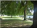 TA1131 : East Park - avenue by Stephen Craven