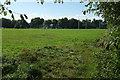 SX8061 : Playing fields, Totnes by Derek Harper