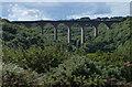 NZ4540 : Denemouth Viaduct, Castle Eden Dene by Mat Fascione