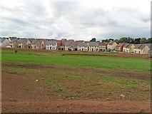 ST0107 : Cullompton: Saxon Fields Development by Martin Bodman