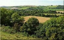 ST6601 : Cerne valley by Derek Harper