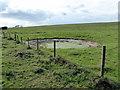 TV5796 : Dew Pond at Wigden's Bottom by PAUL FARMER